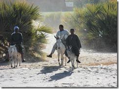 Egypt February 2013 140